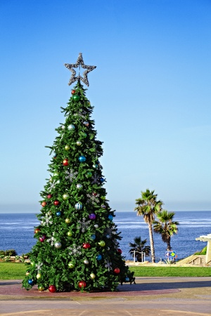 Holiday Cristmas Tree Decorating California Travel And Vacation Lcation Solano Beach's Fletchers Cove With Palm Tree And Walkway Access To the Beach Ocean Waves  Stock Photo - 11550391