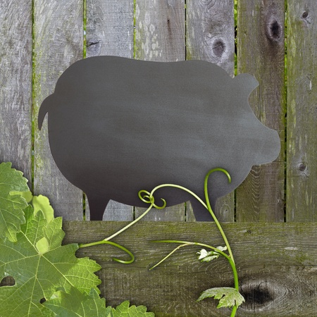 Black Chalkboard Pig Restaurant Menu Advertising Space Over Distressed Grunge, Vintage Aged Green Moss Covered Wood Background With Grape Leaves And Tendrils photo