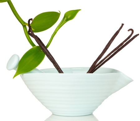 Blue Ceramic Mortar & Pestle With Vanilla Planifolia Vine and Dried Vannilla Pods Reklamní fotografie