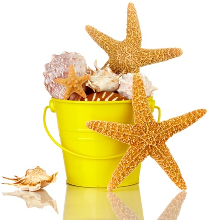 Starfish And Sea Shells In Colorful Yellow Beach Bucket Isolated On White photo
