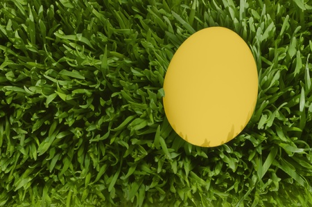 A Detailed Close Up Of A White Egg, Nestled In the Green Grass with Clipping Path photo