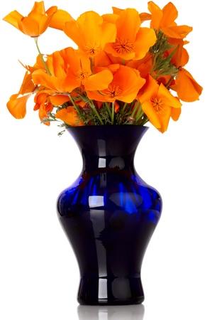Sistemazione floreale di Arancio California Poppy in vaso blu Archivio Fotografico