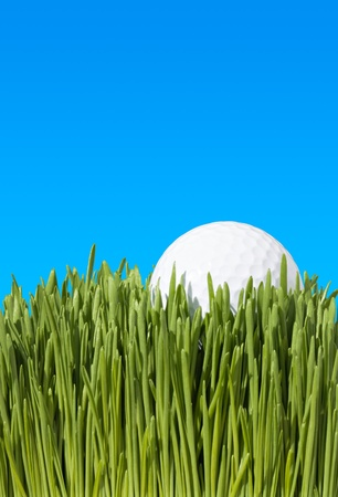 A Detailed Low Angle Close Up Shot of a Golf Ball, Lying In the Green Grass with Blue Sky Copy Space ~ Clipping Path photo