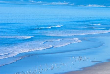 Coastal California Beach