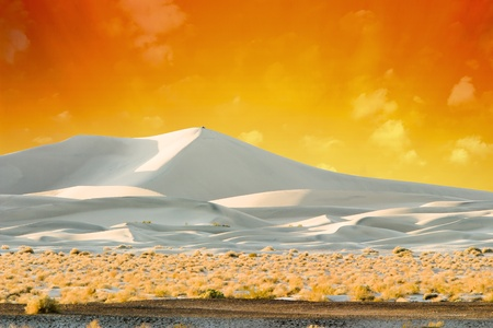 Sand Dunes Lit By Golden Sunset
