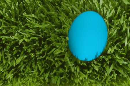 A Detailed Close Up Of A White Egg, Nestled In the Green Grass with Clipping Path Archivio Fotografico