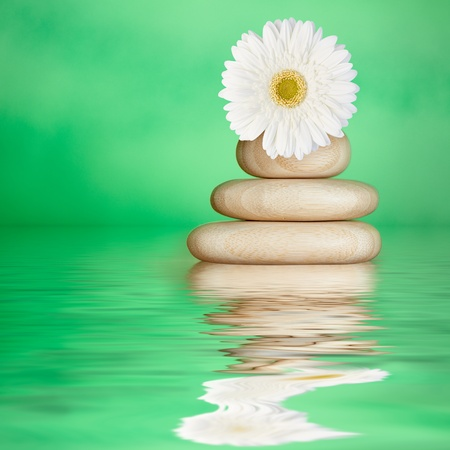 Tranquil Green Spa Water Background with Bamboo Wood Stones & White Daisy Flower Archivio Fotografico