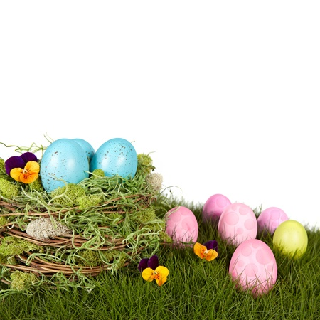 Robins Blue Eggs Nestled In Moss & Twigg Bird Nest Sitting On Natural Growing Grass With Pink, Purple and Green Polka Dot Easter Eggs And Orange Johnny Jump Up Violet Flowers  photo