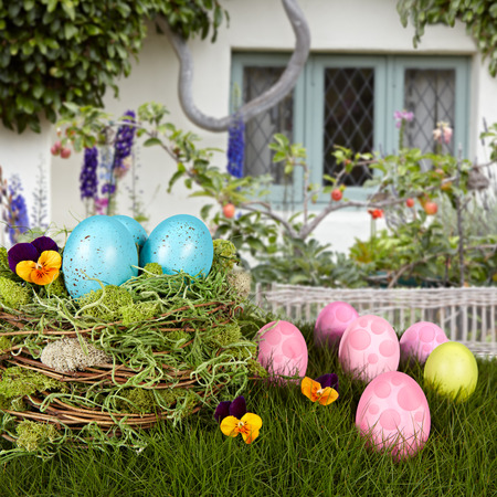 Robins Blue Easter Eggs In Bird Nest, Green Grass With Pink & Purple Holiday Eggs, With Flower Garden Cottage Background Stock Photo