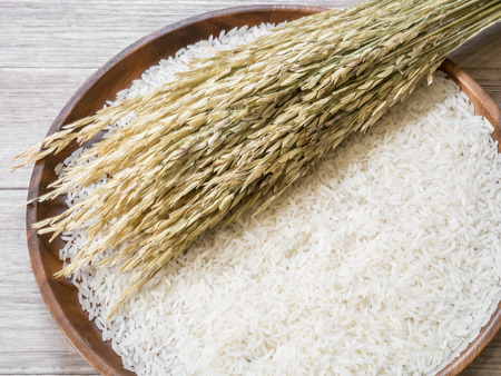 White rice  and rice plant on the wooden plate , uncooked raw cereals Stok Fotoğraf