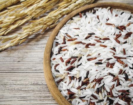 rice: Cierre de arroz blanco y rojo se mezcla en la placa de madera y la planta de arroz, cereales crudos sin cocer