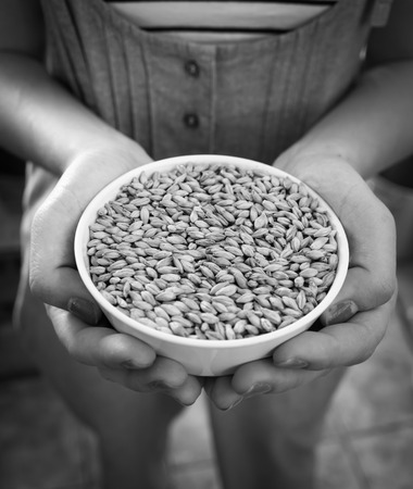 barley malt: Hands holding a white bowl of barley malt grains.( Black and White tone )
