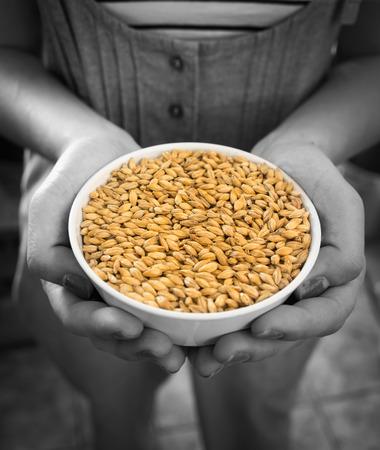 malto d orzo: Mani in possesso di una ciotola bianca di cereali orzo malto. Archivio Fotografico