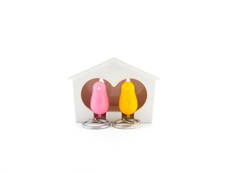 key ring: isolated pink and yellow bird plastic key ring in birdhouse on white blackground