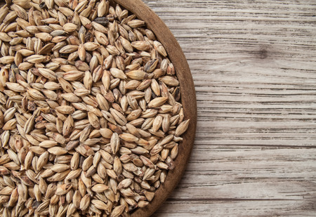 Beer ingredients, Pale ale malt on wooden background ( Space and composition for text )