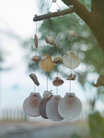 beautify: Hanging seashells mobile blowing in the wind