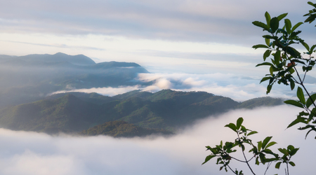 Landscape of moving mist in the mountain and hill . View point of mountain at Doi-Montngo, Chiang Mai â??Thailand Stock Photo