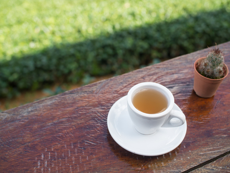 Cup of tea on wooden bar. Beauty nature background of tea plantation at Doi-Montngo , Chiang Mai, Thailand