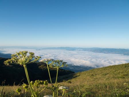 Landschaft des beweglichen Nebels im Berg und im Hügel. Standpunkt des Berges an Kew Mae Pan Nature Trail, Nationalpark Doi Inthanon, Chiangmai-Thailand Standard-Bild - 89593660