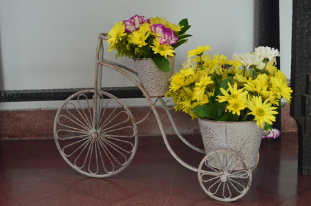 Tricycle flowers Stock Photo