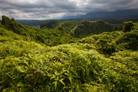 Lush, pristine, emerald green, tropical forest in mountainous region of a volcanic Pacific Island  Dark clouds indicate an incoming storm
