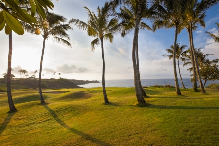 Spectacular, tropical island golf course hole in dramatic early morning light. The green is ringed by palm trees and a sand trap. Stock Photo