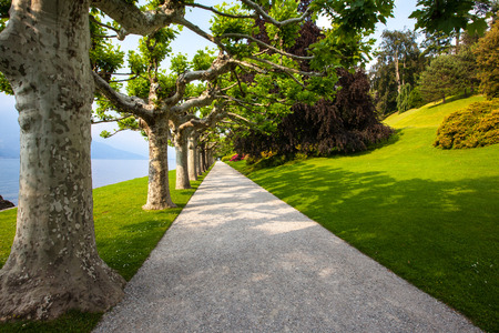 Tree lined, straight gravel walkway leading into the distance in a beautiful garden setting, along a lake front  Late spring, early summer  Sunlight is casting shadows of the trees across the path and well maintained green grass