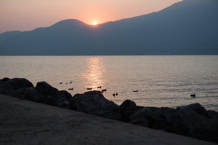 torri: sunset at lake Garda, Torri del Benaco, italy
