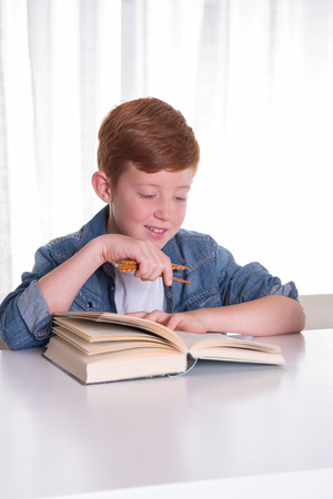 concentrated: young boy reads very concentrated in a book Stock Photo
