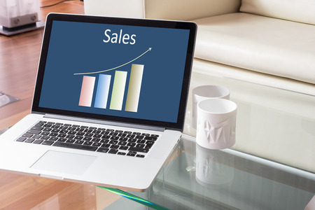 homeoffice: Sales chart on Laptop in a stylish house