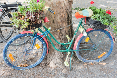 bycicle: abandoned bycicle standing at a tree