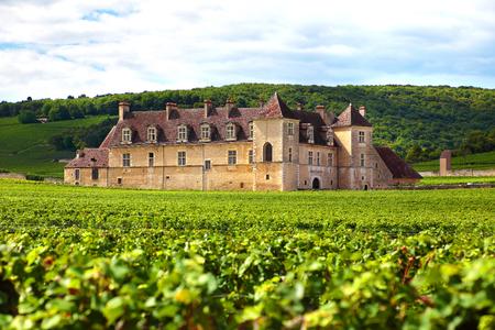 castillos: Borgoña, Francia - 10 de septiembre 2013: Vista del paisaje de un viñedo soleada típica en Borgoña, Francia con Chateau Du Clos Vougeot, paredes de piedra y colinas en el fondo