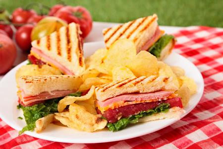 Summer picnic club sandwich ham and cheese, potato crisps