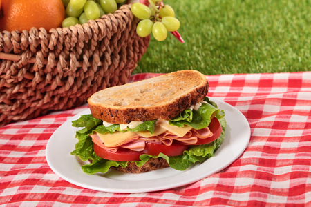 Summer picnic basket toasted ham and cheese sandwich