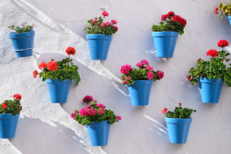 Flower pots decorating on white wall in the old town of Marbella Zdjęcie Seryjne