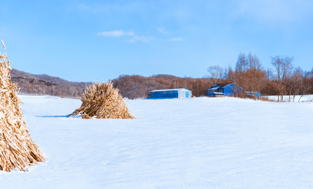 Snow-covered villages and fields