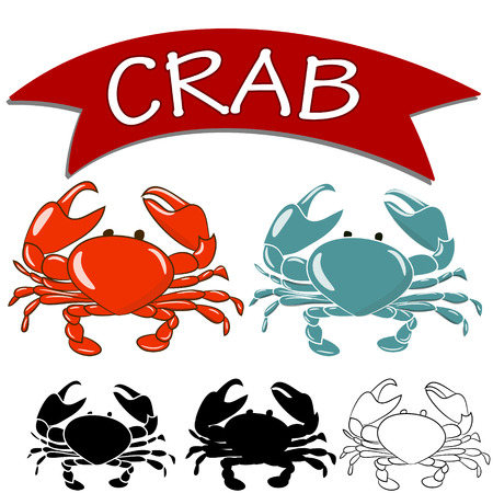 Cooked crab and live crab isolated on white background. Vector