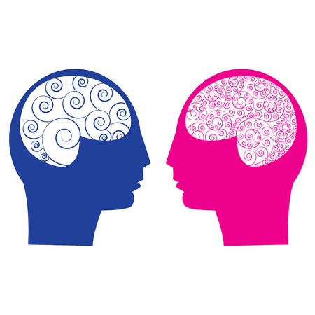 male female: Abstract male vs female brain think  idea ability. Spiral human brain