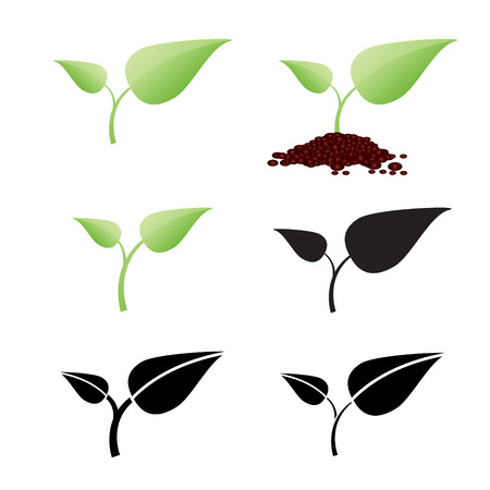 soil: Two leaf plant is growing on soil