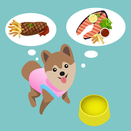 humorous: Pomeranian dog with empty bowl want to eat meat and salmon steak. humorous abstract background.