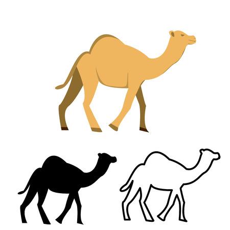 camello: Conjunto de icono de camello plana, vector