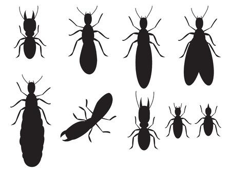 Set van zwarte silhouetten termieten op een witte achtergrond