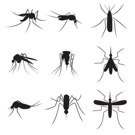 fiebre: Conjunto de los mosquitos portadores de la silueta negro aislado en fondo blanco Vectores