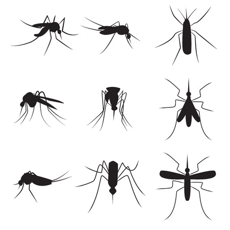 Set of black silhouette carrier mosquitoes isolated on white background Vettoriali
