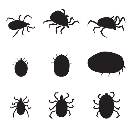 lyme disease: Set of black silhouette dog tick icon. isolated vector illustration