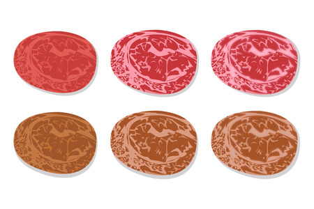 Set of detailed slide fresh ham and grilled salami with line fat texture in flat icon style