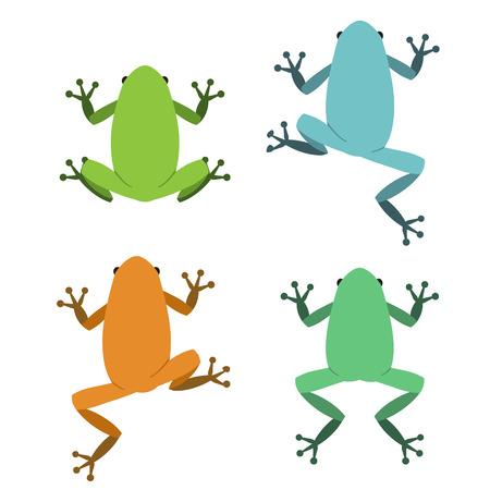 rana venenosa: Conjunto de rana en estilo plano, animal del vector Vectores