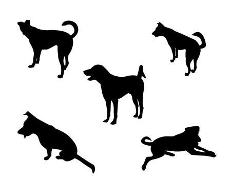 perro labrador: Conjunto de la silueta del perro de fondo blanco, vector