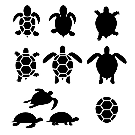 sea creature: Set of turtle and tortoise silhouette, vector