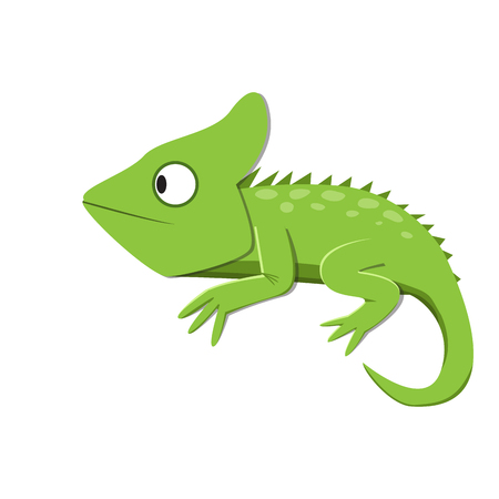 緑のトカゲ フラット スタイルで何かを見て、ベクトル